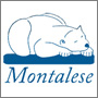 Montalese